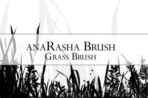Grass brush 2 by anaRasha-stock