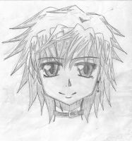 I tried to draw Valshe again by costaku-chan