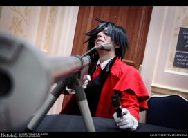 Hellsing: It's Perfection by Maxieyi