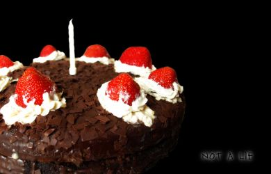 THE CAKE IS NOT A LIE by Lysa-Bell