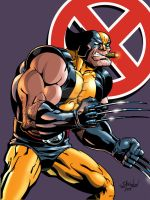 The Wolverine color by ShawnAtkinson