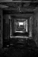 Empty Halls by robertllynch