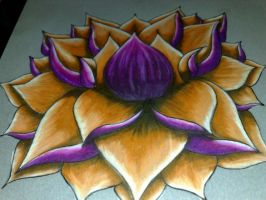 Lotus by bcontimax