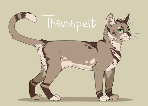 Thrushpelt by Spirit-Of-Alaska