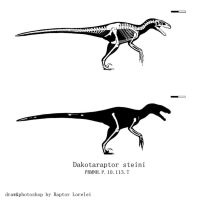 Dakotaraptor steini by Mirroraptor