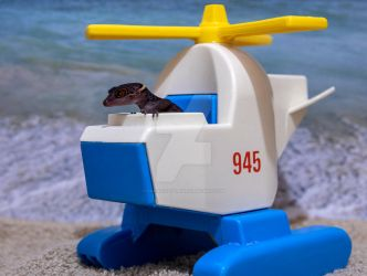 Sabbath - On Beach in Helicopter - 7214 by creative1978
