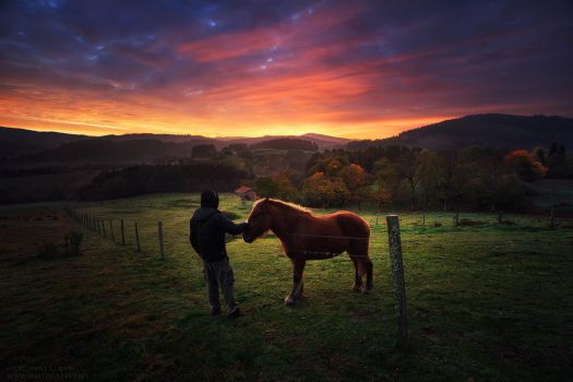 Morning Encounter by FlorentCourty