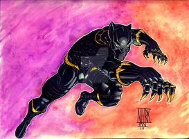 Hero 13: Black Panther by nork