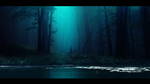 The shadows of the dark forest by Ellysiumn