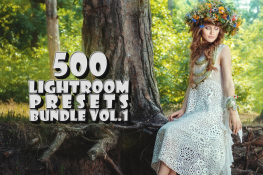 500 Professional Lightroom Presets Bundle V.1 by creativewhoa