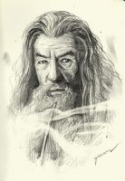 Gandalf The Grey by namusw