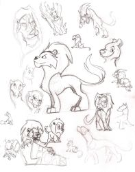 Dec09 Lions by KM-cowgirl