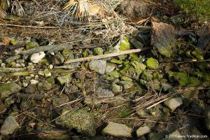 Stone and wood debris stock image 001 by NoirArt