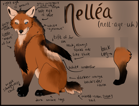 Nellea Reference - 2013 by Ingrissi