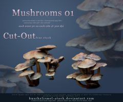 Cut Out Mushrooms Pack 01 by kuschelirmel-stock