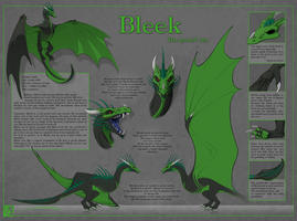 Bleek 4.0 by Surrial