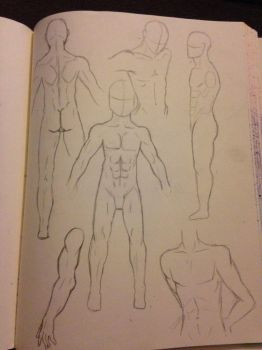 Male Anatomy by PikachuThunderbolt4
