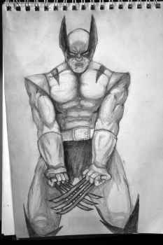 Wolverine by IvanMaximoff