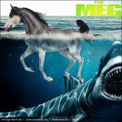 The-Meg-(comm) by VIP-EquineArt