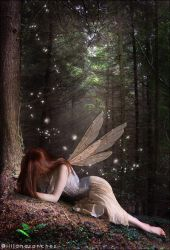 the faerie who was kissed by Princess-of-Shadows