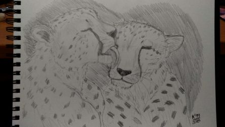 Happy Valentine's day! (cheetah version) by kosko99