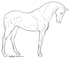 Standing Horse Lineart by Manic-and-Monstrous