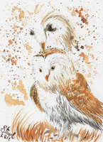 Barn owl painting by SulaimanDoodle