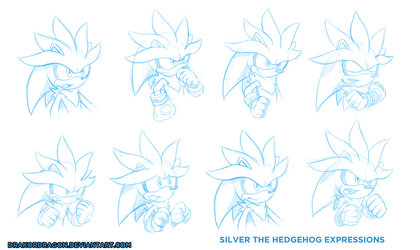 Silver Expressions Sketch by DrakorDragon