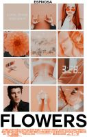 Flowers||Wattpad Cover|| by DaisyChan55