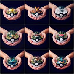 Poke Ball Terrarium Collage by TheVintageRealm