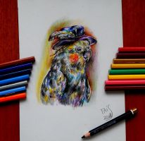 Parrot in the Hat by sweetTais