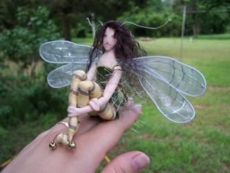 Dragonfly fae by paulaspixies