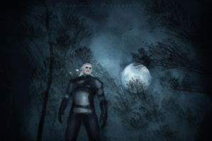 Witcher at Night by ElyneNoir