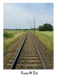 Tracks of life by Lechuckie