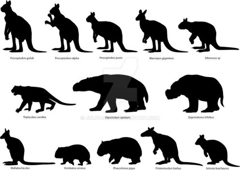 Extinct and extant marsupials by juliolsson