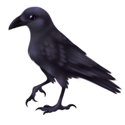 crow by diabloceratops