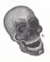 Skull Stippling Pen and Ink by JesseAllshouse