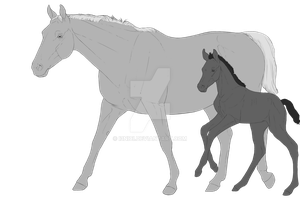 Mare and Foal adopts base by i3nici
