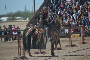 Jousting - 4 by Silver-Stock-Images