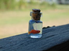 Tiny Goldfish in Bottle 2 by jen4eternity