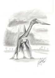 New Azdarchid Pterosaur by liliensternus
