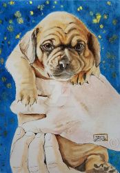 World Watercolor Month - Day 25 (Puppy) by Harmony1965