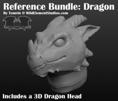 Art Ref: 3D Dragon Head Model by Temrin