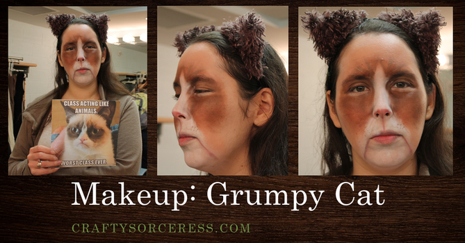 Grumpy Cat Makeup by craftysorceress