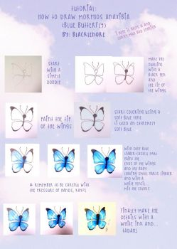 +How to Draw Morphos Anaxibia - Blue Butterfly+ by BlackLenore