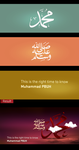 Mohamad PBUH all in one by amort01