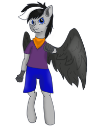 Hippogriff Storm (digitalized) by S7ormDancer14