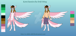 Keini Dantin the Drift Wing by Crow-Faced