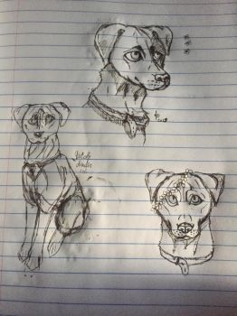 Pit bull mix doodle dump by StaticPigeons