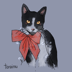[commission] cat with a ribbon and fairy lights by Toraimu